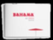 Bahama-Brochure-Bahama-de-300x226.png