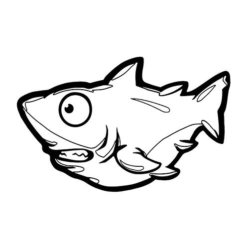 컬러룬 백상아리(10EA)
