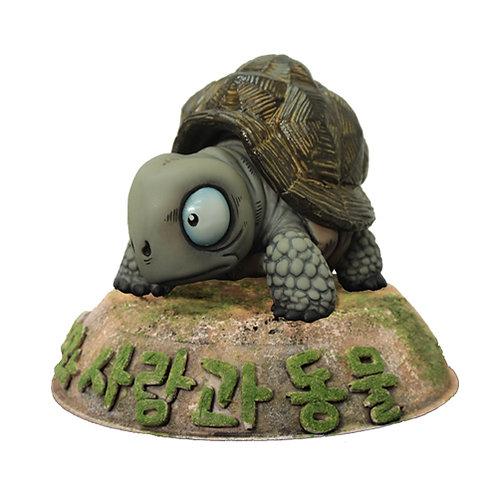 피규어 갈라파고스 거북