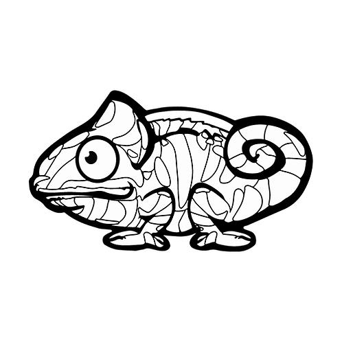 컬러룬 팬서카멜레온(10EA)