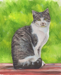 Tabby Cat, watercolor_edited.jpg
