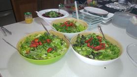 שולי שף - ארוחות גורמה באווירה כפרית (16