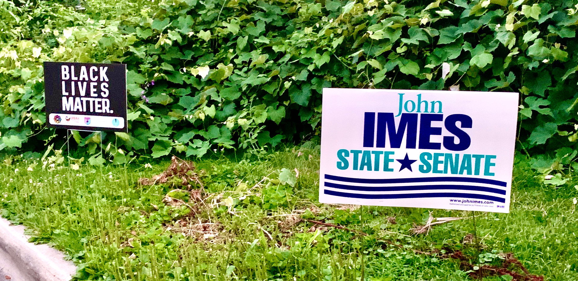 BLM yard sign with Imes sign.jpg