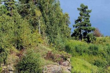La protection des espaces naturels en Wallonie: pourquoi, par qui et comment ?