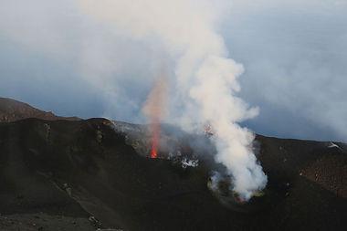 Le Jardin Extraordinaire - Les volcans
