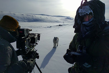white_wolves_the_adventure.jpg