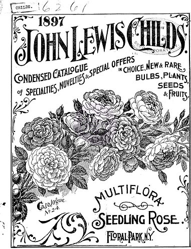 John Lewis Childs: Small (11inch x 14inch)