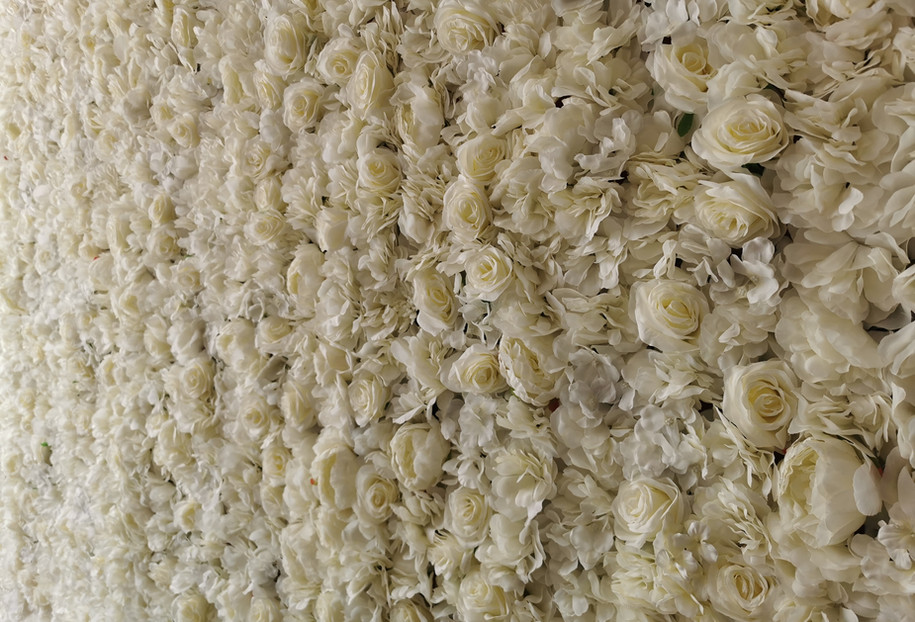 ivory white flower wall hire south wales