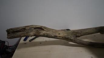 Stück Treibholz vor der Bearbeitung