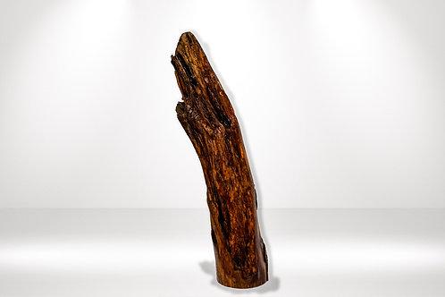 Treibholz-Skulptur Gregor