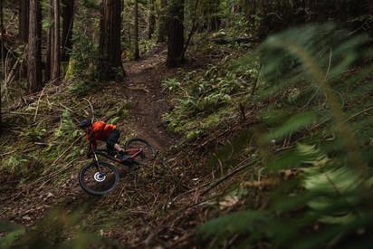 Mountain Biking - Santa Cruz, CA