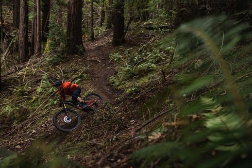 Mountain Bike Photography | Praxis Works