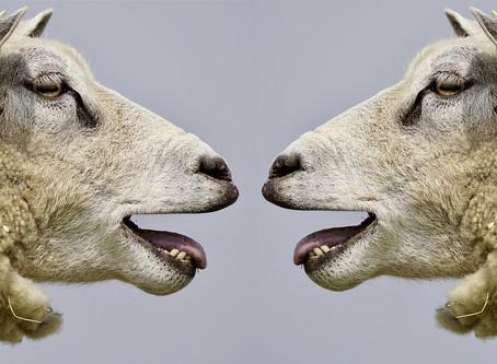 סודות הדיבור הנכון - על כוחן המסתורי של המילים