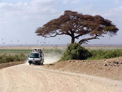 טיול ספארי באפריקה - ספארי בקניה.jpg
