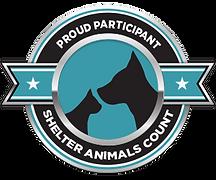 shelter-count-affiliations.png