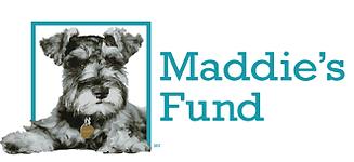 maddie-image.png