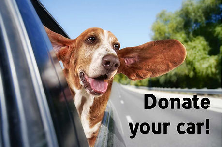 Donate-Car.jpg