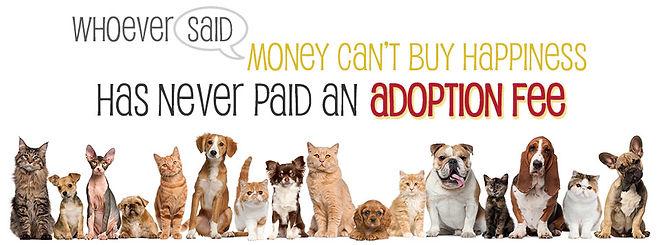 adoption-fee-banner.jpg