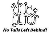 No Tails.jpg