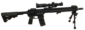 MG Custom Armory AR-15 Punisher