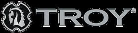 TROY-Logo-Horizontal-WEB.png