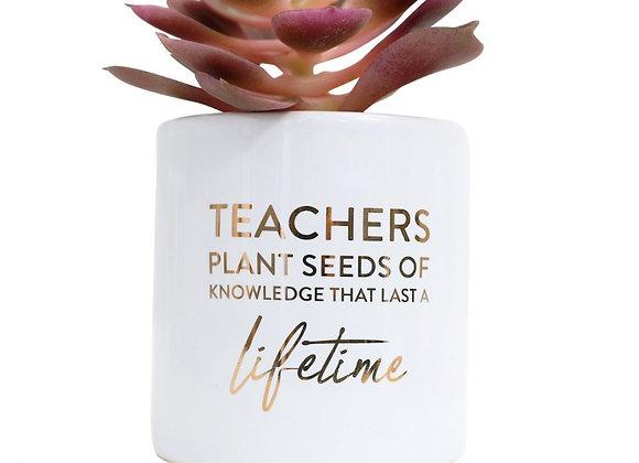Teacher Lifetime Pot Plant
