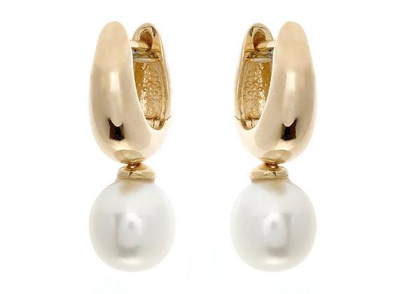 Sybella - Gold hoop & fresh water pearl earrings