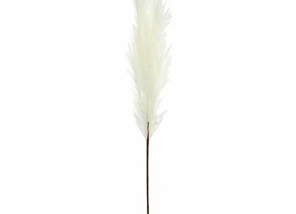 Pampas Grass Natural - 100cm