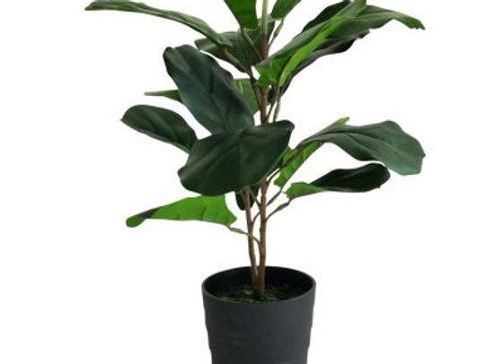 Fiddle Leaf Plant Artificial 60cm