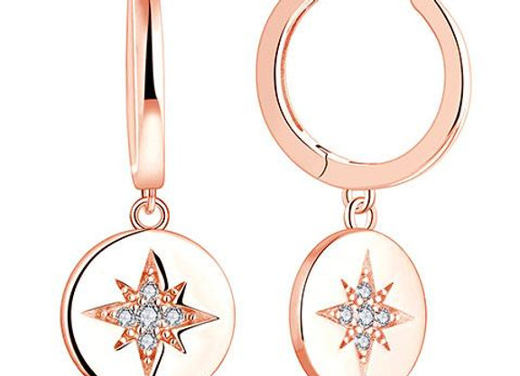 Susan Rose - Solid Disc with star rose gold earring