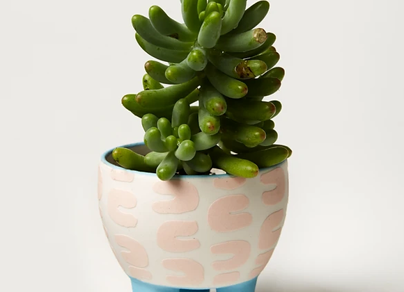 Jones & Co - Paper Cut Planter Pink Curve