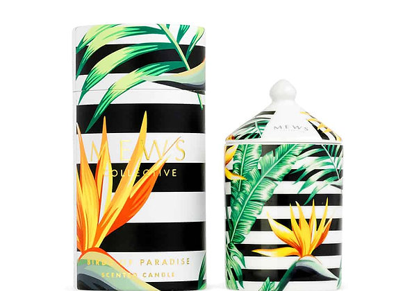 The Mews - Bird of Paradise Candle 100g