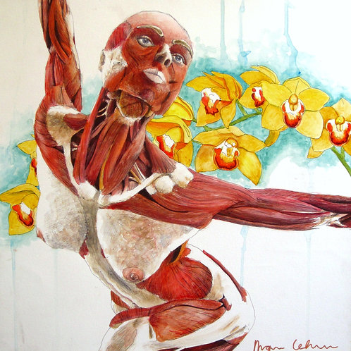 "Ballerina - Framed 12x12"" Glicee Print"