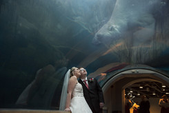 PPG Zoo Wedding