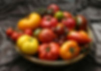 Tomato-Basket-on-Brown-small.jpg