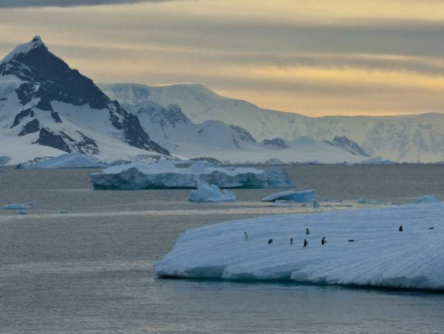 Aurora Expeditionskreuzfahrten