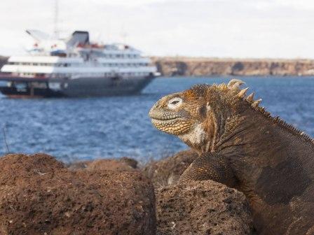 Silversea Cruises Galapagos Luxuskreuzfahrten