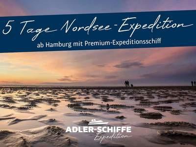 Expeditionskreuzfahrt Wattenmeer