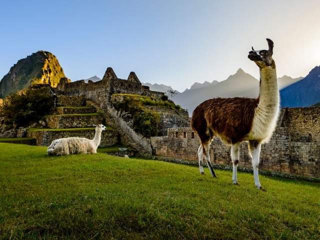 Celebrity Expeditionskreuzfahrt Galapagos