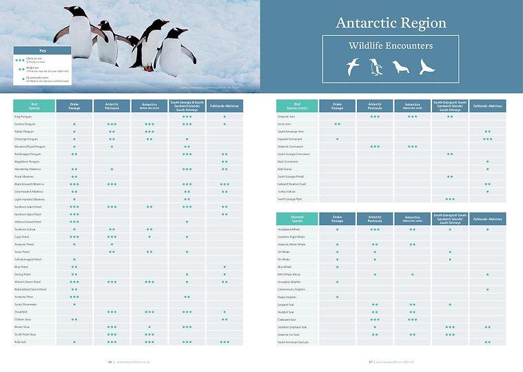 Antarktis -Tierwelt
