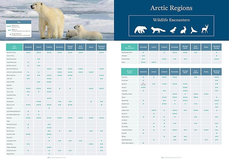 Arktis - Tierwelt