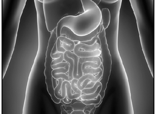 Simple Steps to Improving Gut Health