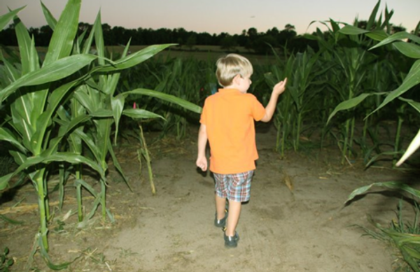 Child walking through maze.png
