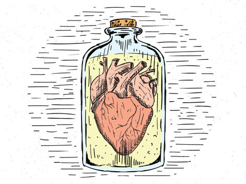 human heart in a jar