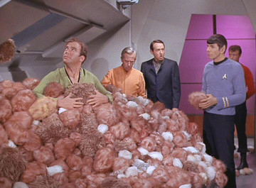 Writing 101 - Linguistic Tribbles Invading Your Writing?