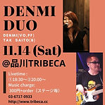 201114denmi_duo_tribeca_flier.jpg