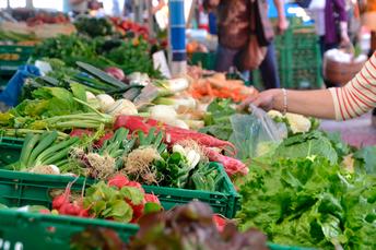 Laboratório de Inovação busca valorizar e fortalecer sistemas alimentares saudáveis e sustentáveis