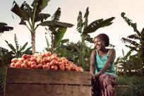 Cúpula de Sistemas Alimentares abre diálogos globais para reunir soluções sustentáveis