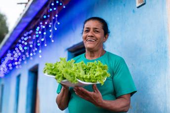 PNAE: Estudo aponta redução na compra de alimentos da agricultura familiar