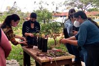 Oficina sobre Produção de Flores e Plantas Ornamentais Tropicais é realizada em Ivinhema
